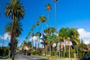 Экскурсия «Лос-Анджелес для жизни» (фото 6)