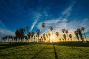 «По следам знаменитостей» - экскурсия по Лос-Анджелесу (фото 3)