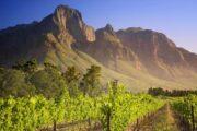 «Попробуй Малибу на вкус» - винная экскурсия из Лос-Анджелеса в Малибу (фото 1)