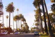 «Вызов времени» - автопрогулка по Лос-Анджелесу на винтажном автомобиле (фото 6)