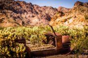 «Дикий, дикий Запад!» - экскурсия из Лас-Вегаса в каньон Эльдорадо (фото 6)