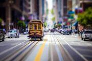 «Главный экспонат» - обзорная экскурсия по Сан-Франциско + поездка в парк секвой «Муир Вудс» (фото 2)