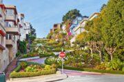 «Главный экспонат» - обзорная экскурсия по Сан-Франциско + поездка в парк секвой «Муир Вудс» (фото 5)