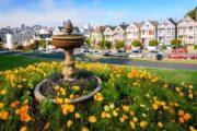«Главный экспонат» - обзорная экскурсия по Сан-Франциско + поездка в парк секвой «Муир Вудс» (фото 7)