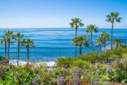 «Калифорникейшн» - экскурсия по побережью Лос-Анджелеса + посещение винного сафари в Малибу (фото 3)