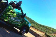 «Калифорникейшн» - экскурсия по побережью Лос-Анджелеса + посещение винного сафари в Малибу (фото 6)
