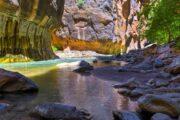 «Картина маслом» - экскурсия из Лас-Вегаса в национальный парк Зайон (фото 3)