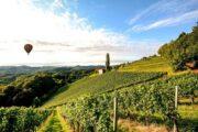 «На рассвете дня» - полет на воздушном шаре над долиной Темекула + дегустация вина на винодельне (фото 5)