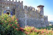«Самый лучший день» - экскурсия из Сан-Франциско в долину Напа и парк секвой «Муир Вудс» (фото 5)
