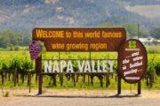 «Самый лучший день» - экскурсия из Сан-Франциско в долину Напа и парк секвой «Муир Вудс» (фото 7)