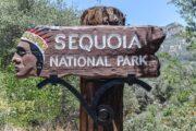 «Тропа великанов» - экскурсия из Лос-Анджелеса в национальный парк «Секвойя» (фото 4)