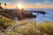 «Земля обетованная» - экскурсия по Сан-Диего (фото 6)