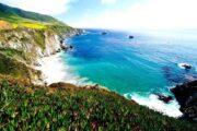 ур вдоль тихоокеанского побережья в Сан-Франциско «Дорога странствий» (фото 2)