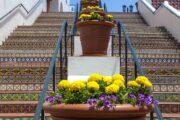 «Формула красоты» - экскурсия по городам по дороге от Лос-Анджелеса к живописному Сан-Франциско (фото 6)