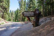 «Неразлучная пара» - тур из ЛА в национальные природные заповедники Йосемити и Секвойя (фото 5)