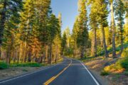 «Производит впечатление!» - тур из Сан-Франциско по заповедникам Йосемити и Секвойя (фото 8)