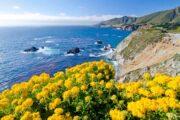 «Страсти по океану» - тур вдоль тихоокеанского побережья по калифорнийскому хайвею (фото 2)