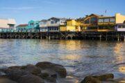«Страсти по океану» - тур вдоль тихоокеанского побережья по калифорнийскому хайвею (фото 7)