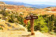 «В натуральную величину» - Тур из Лас-Вегаса по национальным паркам: Зайон, Брайс, Гранд Каньон и городу Седона (фото 7)