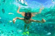 «До поросячьего визга» - однодневное VIP-путешествие на остров Эксума (фото 8)