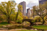 Обзорная экскурсия «Однажды в Нью-Йорке» (фото 2)